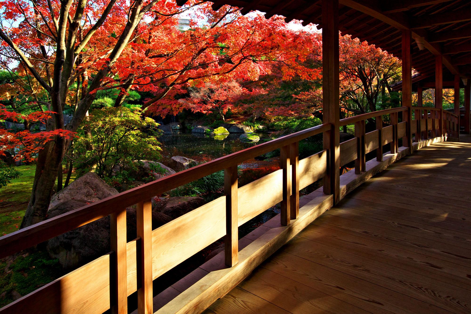 姫路城 西御屋敷跡庭園 好古園