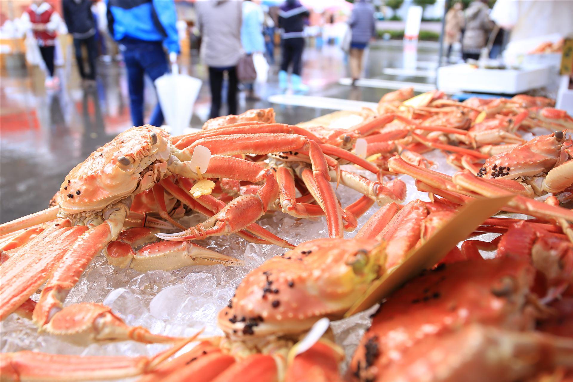 ブランドズワイガニ「越前かに」即売・海鮮グルメを堪能! 蟹の祭典開催